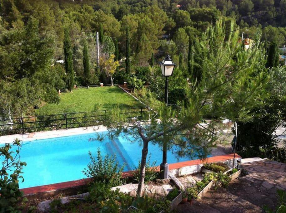 Zwembad (privé)