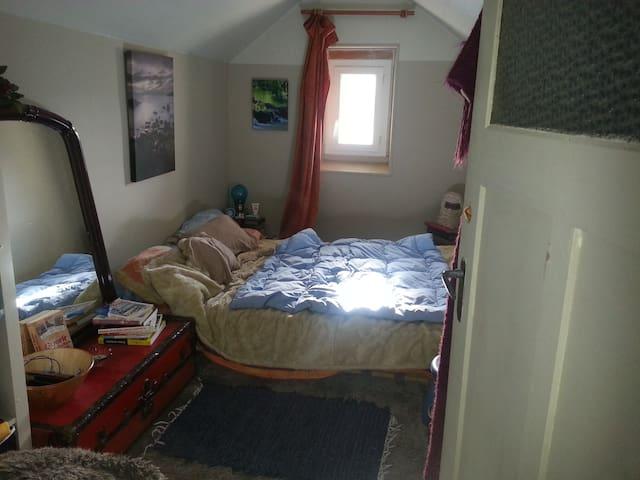 belle chambre dans maison de 1930 - Clermont-Ferrand - Dom