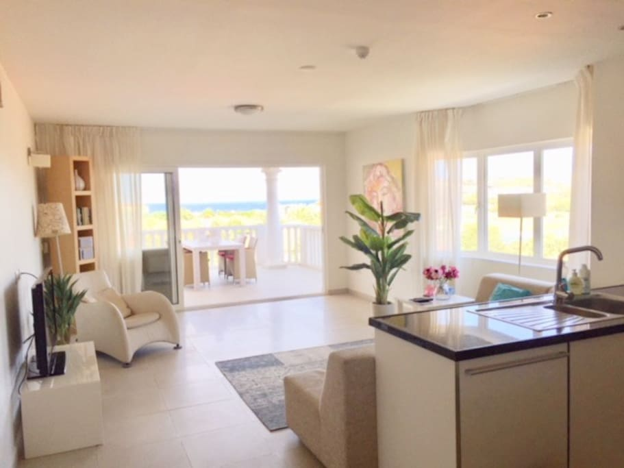 upgraded living room and terrace