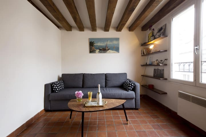 Lovely & Cosy Flat in Le Marais