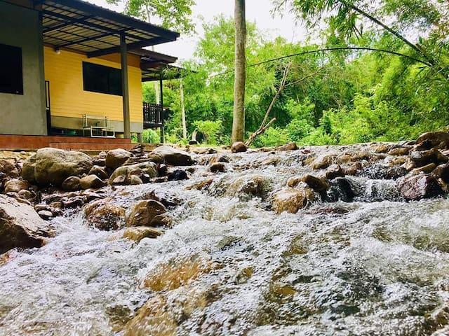 786 Saithan Cha-om Park สวน 786 สายธารชะอม