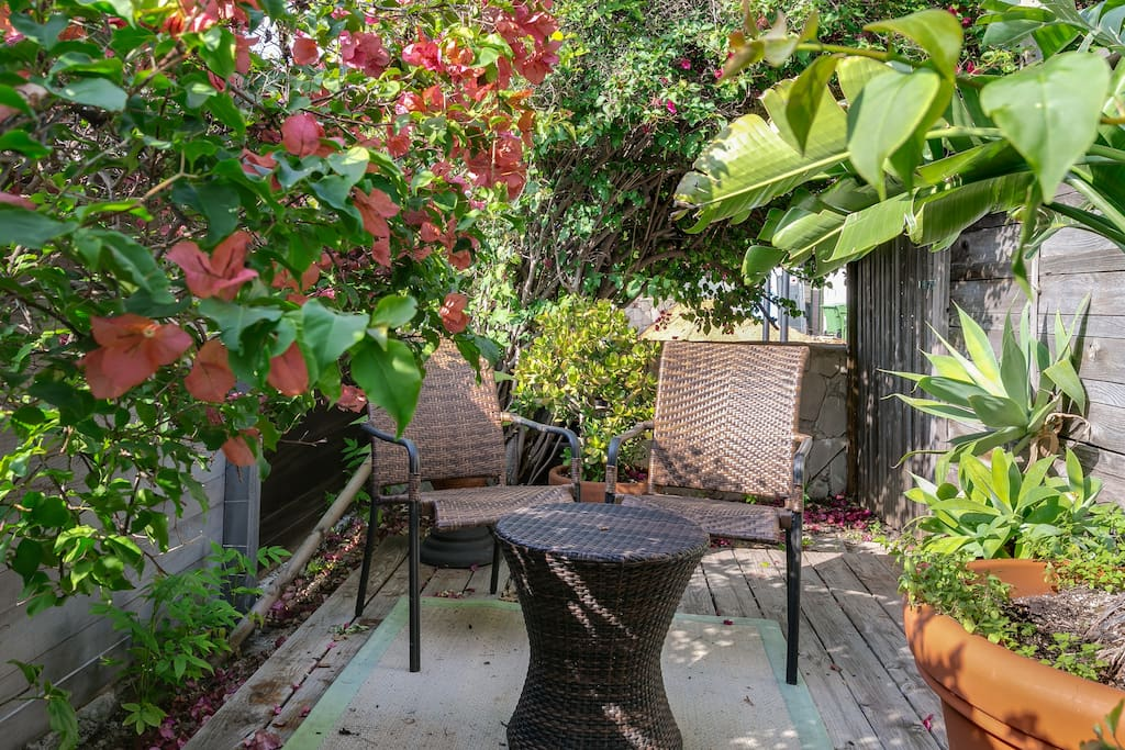 Outside the front door. Quiet and secluded seating area for two. Lush green plants and blooming Bougainville.