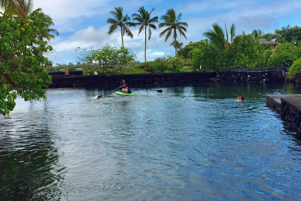 Champagne Pond - where you can often swim with green sea turtles - is just across the street.