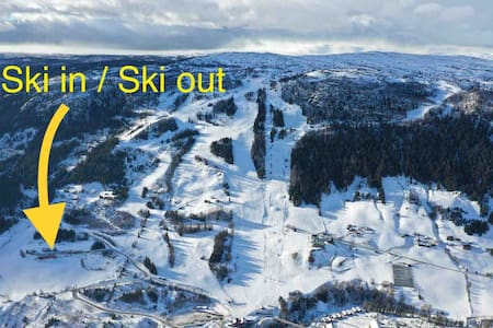 Central ski/bike apartment at Ål ski resort
