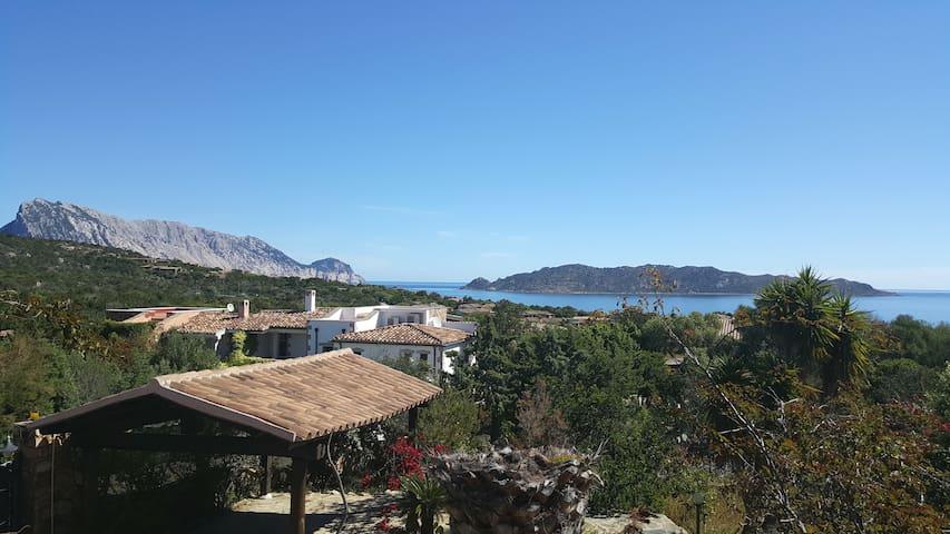 "Villa 8 Betten in ""CALA GINEPRO"" SAN TEODORO"