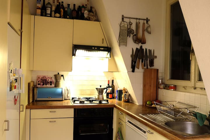 Cosy and central apartment with 360° terrace view - Zürich - Apartmen