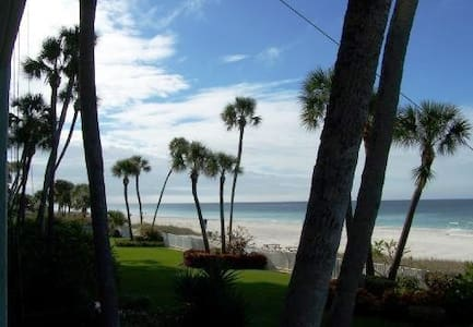 Direct beachfront luxury condo! (weekly rental) - Indian Shores