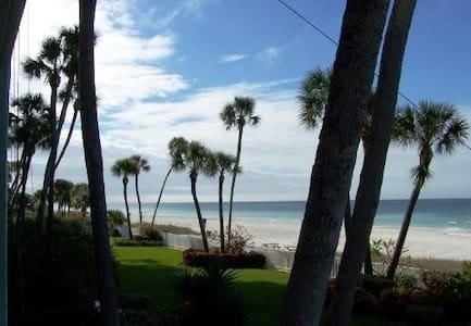 Direct beachfront luxury condo! (weekly rental) - 印度海岸(Indian Shores)