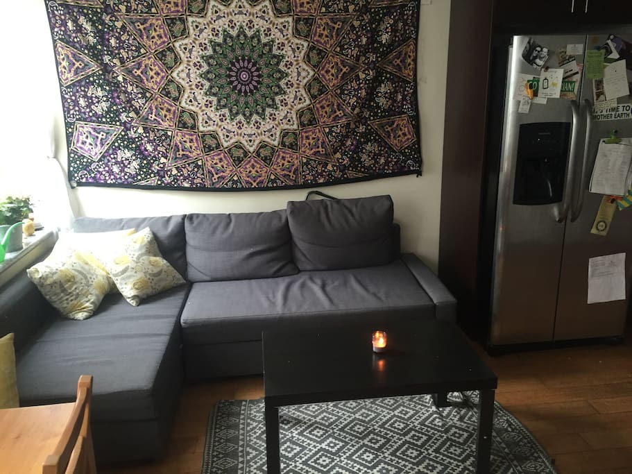 Living area (shared w. 2 roommates)
