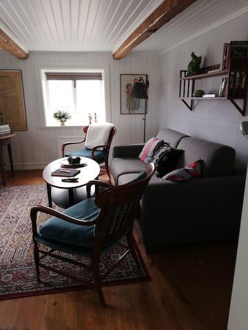 Vardagsrum med bekväm bäddsoffa för två samt TV.