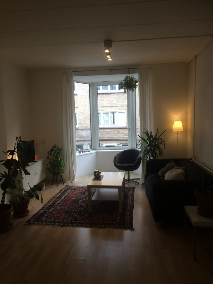 Spacious shared living room
