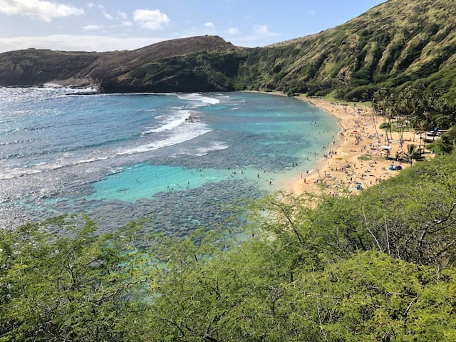 World Famous Hanauma Bay is minutes away.