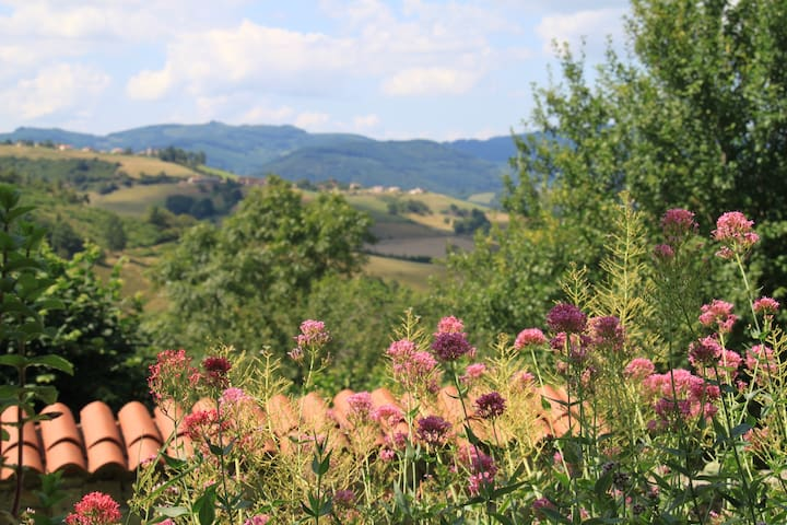 3. Quiet Retreat in the Beaujolais Hills. Room 3 - Rhône - Guesthouse