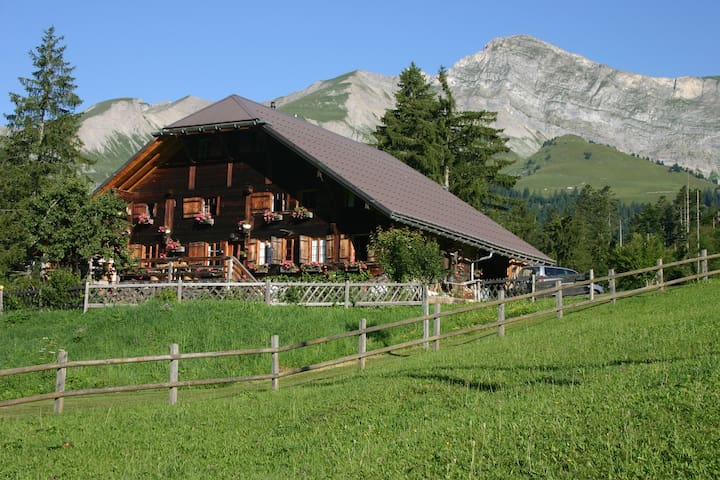 Beautiful chalet sleeps 10,  best panoramic views! - Rougemont