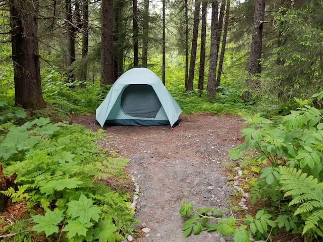 Tent Site #1