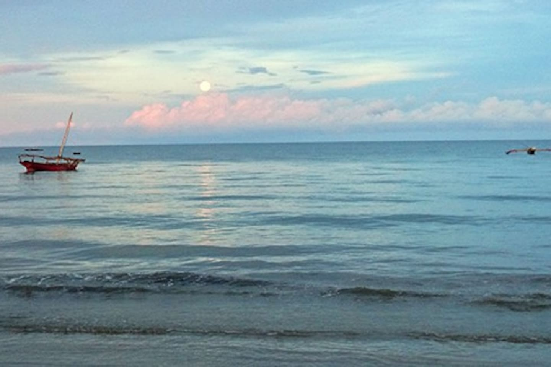 Pangani beach - no disturbances