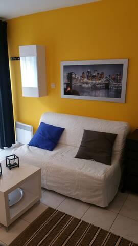 canapé lit type BZ