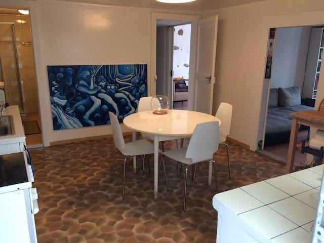 Bel appartement sur Lavaux avec vue - Saint-Saphorin