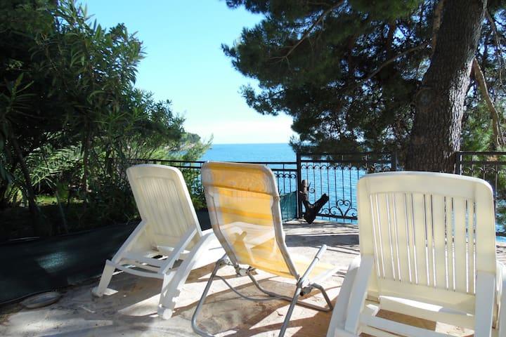 Апартамент люкс с террасой, соснами и морем