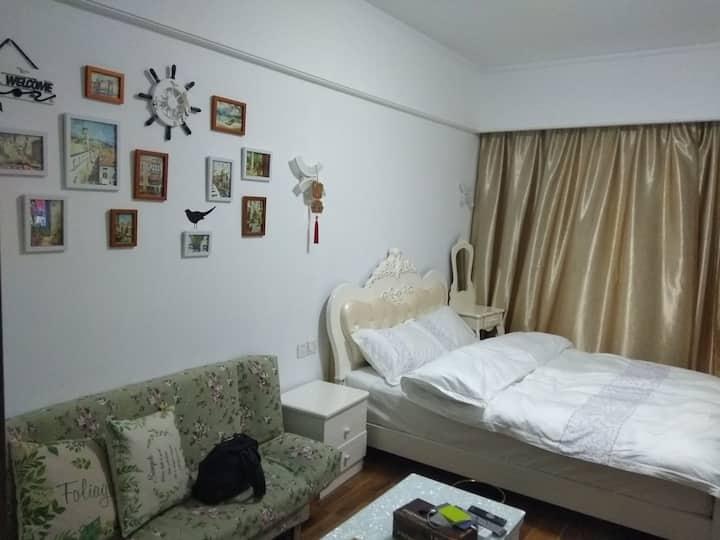 小雅逸居~近地铁中央风景开张体验豪华公寓房