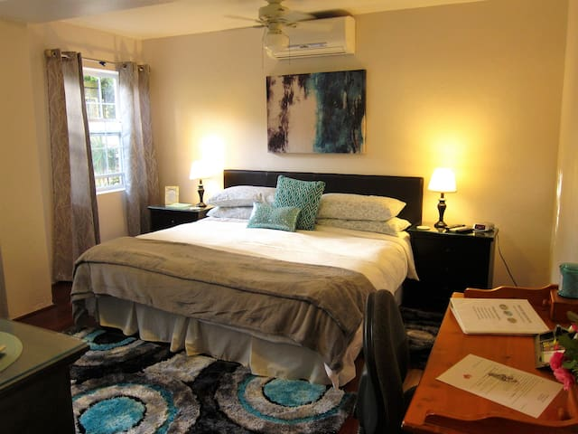 Fully Air conditioned Guest Room with wi-fi, wood floors, king bed
