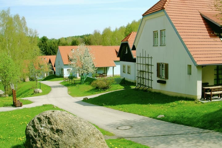 Spacious apartment in the idyllic hilly landscape of the beautiful Waldviertel.