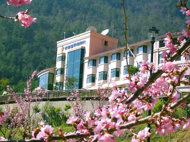 武陵渡假農場-雙人一大床 - Heping District - Minsu (Tchaj-wan)