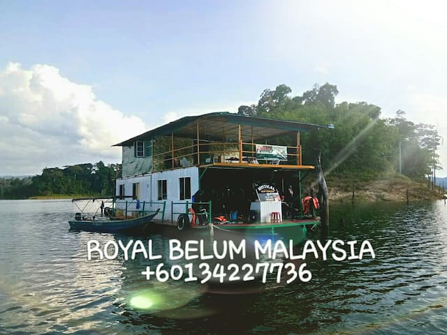 Tame the untamed be a King at Royal Belum Malaysia