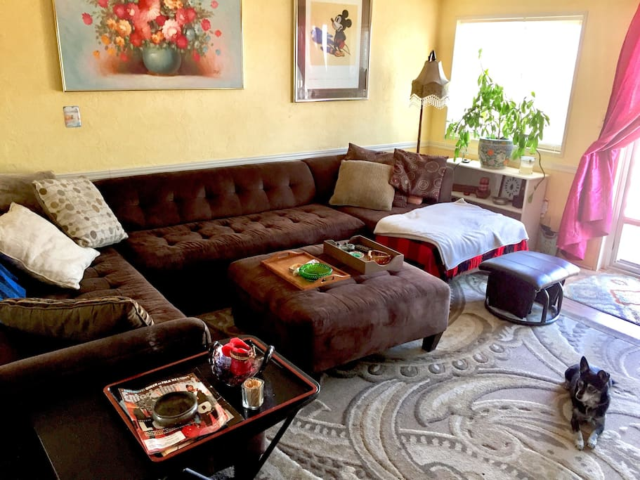 Living room with sectional couch and my dog, Pepper