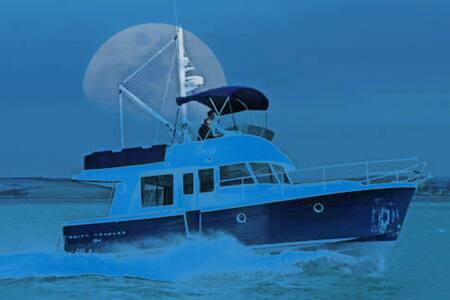"""Stay on board """"Lady Anne"""" - Lymington - Boat"""