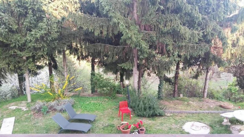 Villa Verde relax 20 km da torino