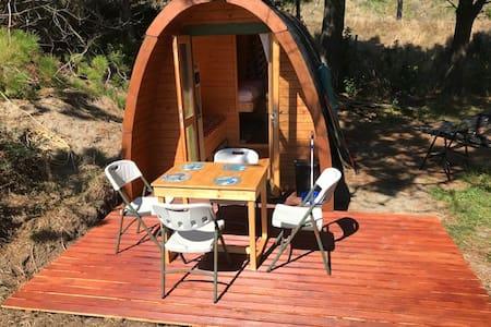 Tiny beach holiday house an hour from Wellington