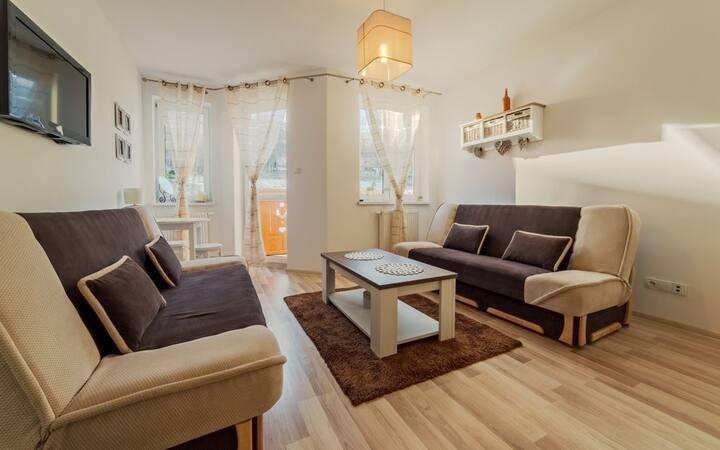 Apartament Wilcza 3A/11