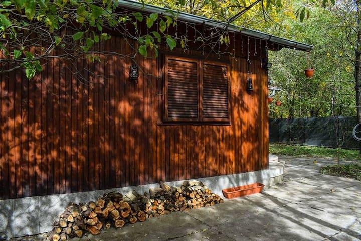 The Bear Claw Cabin