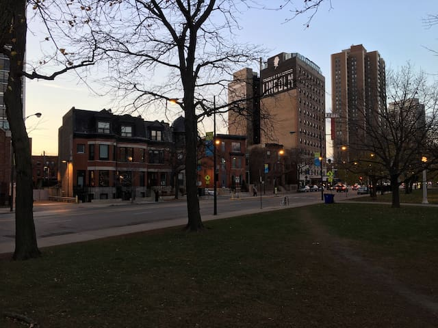 Old Town 2BD/1BA Apt on the Park (Renovated 2015) - Chicago - Appartamento