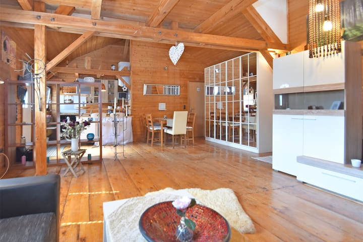 Beautiful gallery apartment in Passau with separate entrance and a large terrace