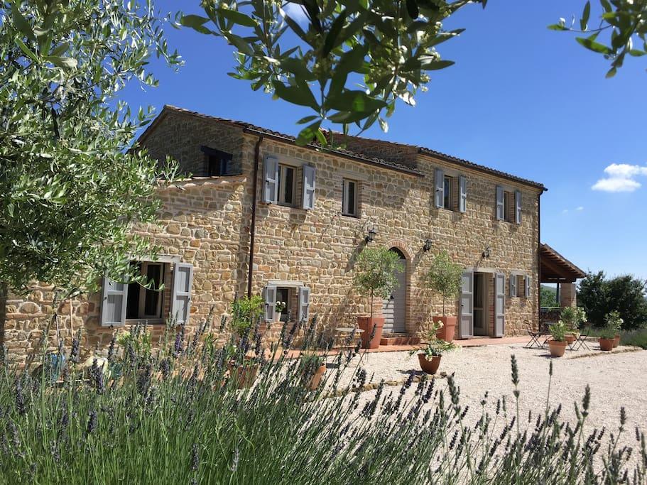 Newly constructed farmhouse