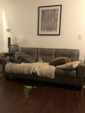 Great Napa Getaway Located Downtown! Pet Friendly