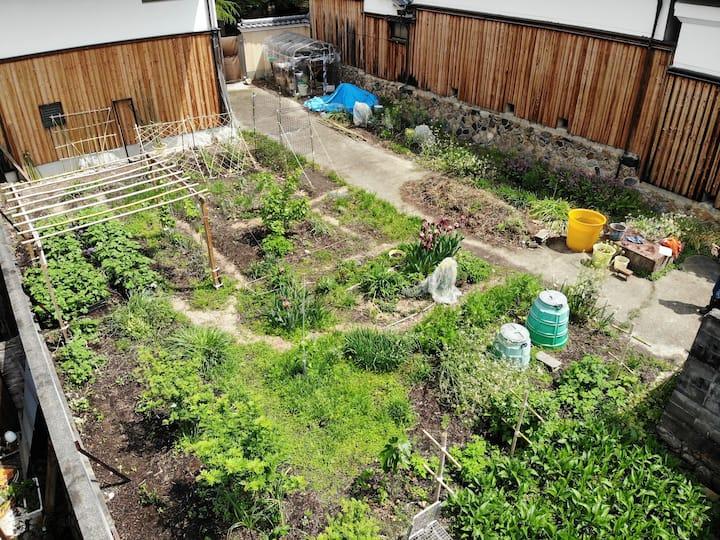 Organic food is growing year-long