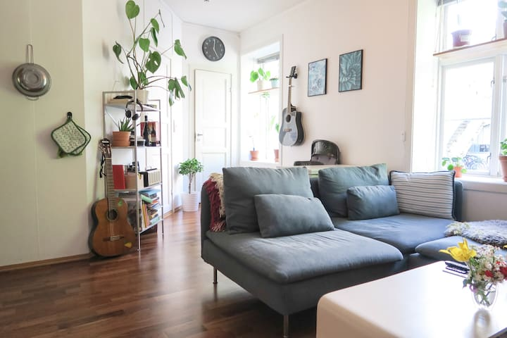 Cozy apartment right in the city centre!