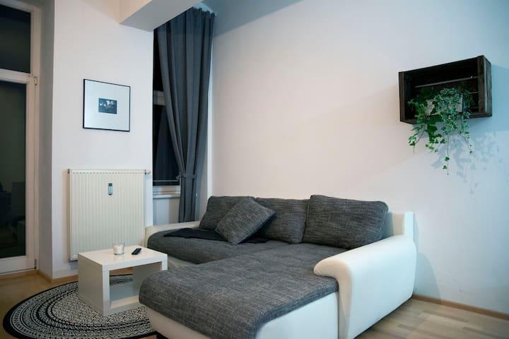 Amazing apartment in the center of Graz
