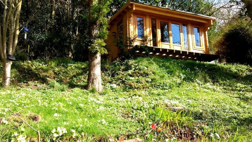 Wye Valley Hillside Log Cabin