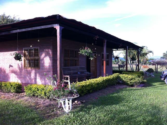 Finca la Daniela - Pitalito - Cabana