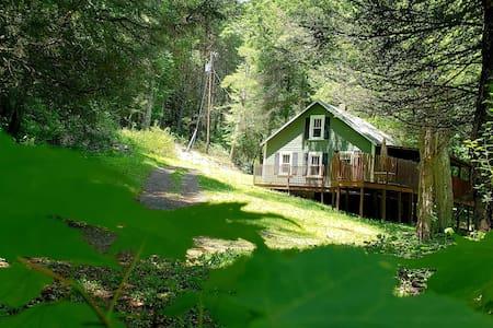 Off the Beaten Path by Buffalo Mountain Getaway