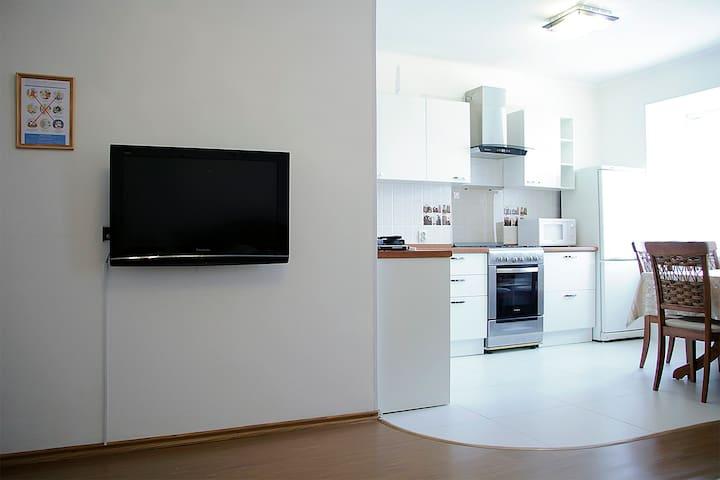 Большой телевизор с цифровыми каналами