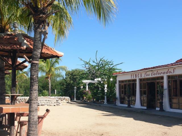 FINCA LOS COLORADOS-Habitacion No. 3