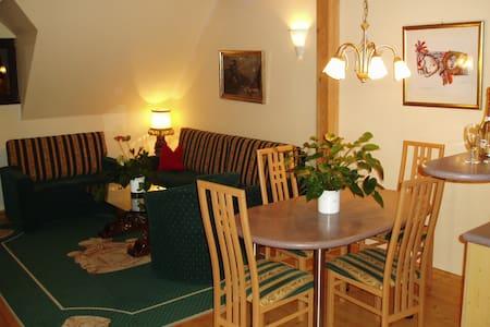 Schloss Mondsee bei Salzburg - Mondsee - Service appartement