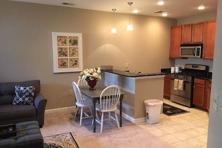 Cozy Apartment, Walk to Metro to DC or Stay Local - 费尔法克斯 - 公寓