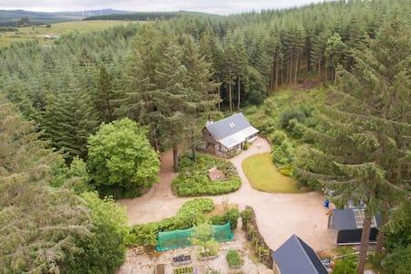 Eco-cottage in a forest, Co. Sligo. - Coola