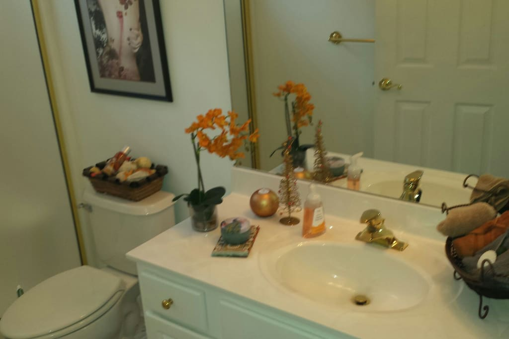 full bathroom with walkin shower..towels and washcloths provided..along with shampoo and body wash... Area is shared with other guest